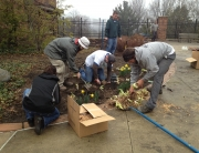 Employees of Schill Grounds Management, Landscape Management magazine, and teacher Peter Adorjan (hat) from Roxboro Middle School install daylilies.